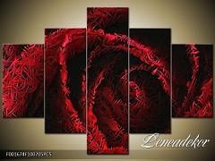 Obraz na zeď-květy- 5D F001674