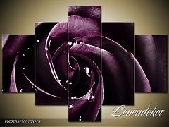 Obraz na zeď-květy- 5D F002035