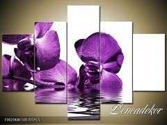 Obraz na zeď-květy- 5D F002068