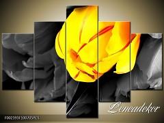 Obraz na zeď-květy- 5D F002393