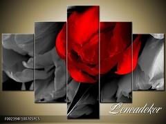 Obraz na zeď-květy- 5D F002394