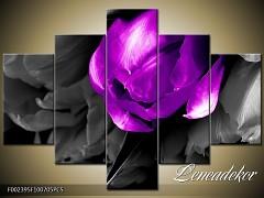 Obraz na zeď-květy- 5D F002395