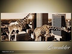 Obraz na zeď-města,architektura- Panorama F003705