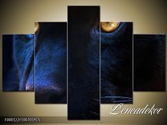 Obraz na zeď-zvířata- 5D F000122