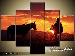 Obraz na zeď-zvířata- 5D F000475