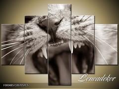 Obraz na zeď-zvířata- 5D F000485