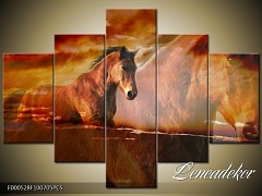 Obraz na zeď-zvířata- 5D F000528