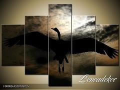 Obraz na zeď-zvířata- 5D F000836