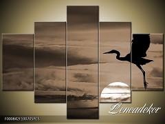 Obraz na zeď-zvířata- 5D F000842