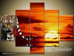 Obraz na zeď-zvířata- 5D F000859