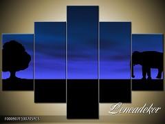 Obraz na zeď-zvířata- 5D F000907