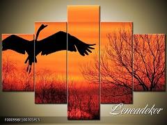 Obraz na zeď-zvířata- 5D F000998