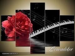 Obraz na zeď-hudba-5D F000096