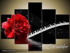 Obraz na zeď-hudba-5D F000207