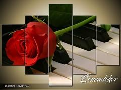 Obraz na zeď-hudba-5D F000382