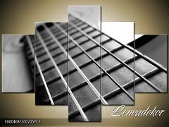 Obraz na zeď-hudba-5D F000468