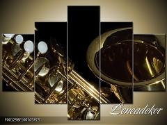 Obraz na zeď-hudba-5D F001298