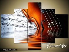 Obraz na zeď-hudba-5D F002936