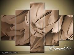 Obraz na zeď-sépiové tóny-5D F001892