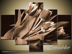 Obraz na zeď-sépiové tóny-5D F001899