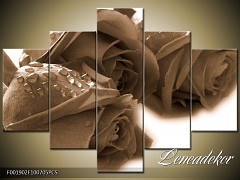 Obraz na zeď-sépiové tóny-5D F001902