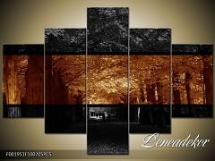 Obraz na zeď-sépiové tóny-5D F001951