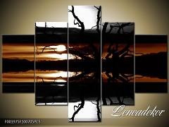 Obraz na zeď-sépiové tóny-5D F001975